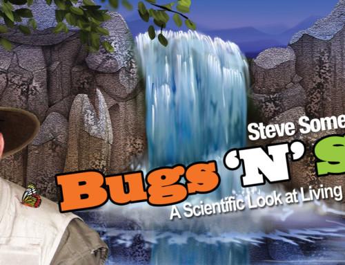 Bugs 'N' Stuff! Files